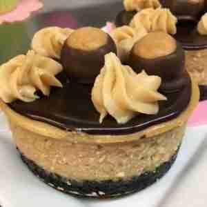 buckeye ball cheesecake